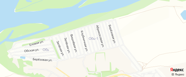 Карта садового некоммерческого товарищества Оби-1 города Барнаула в Алтайском крае с улицами и номерами домов