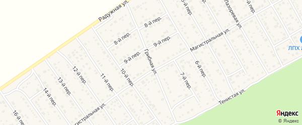 Грибная улица на карте Лесного поселка с номерами домов