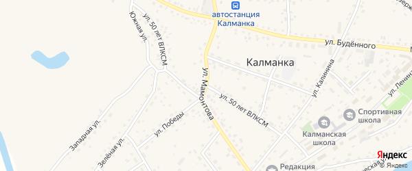 Улица 50 лет ВЛКСМ на карте села Калманки с номерами домов