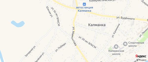 Улица Мамонтова на карте села Калманки с номерами домов