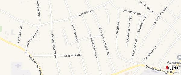 Большевистский переулок на карте поселка Тальменки с номерами домов