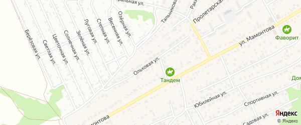 Ольховая улица на карте села Власихи с номерами домов