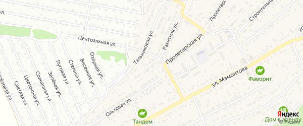 Тальниковый тупик на карте села Власихи с номерами домов
