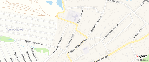 Ракитная улица на карте села Власихи с номерами домов