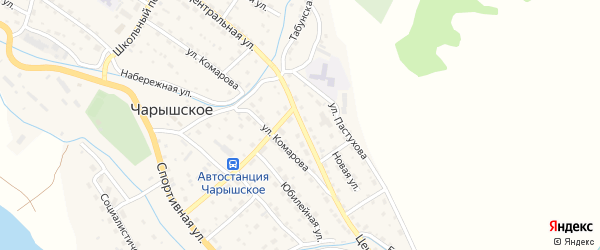 Центральная улица на карте Чарышского села с номерами домов