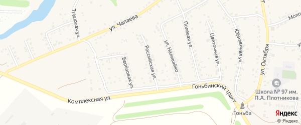 Российская улица на карте села Гоньбы с номерами домов