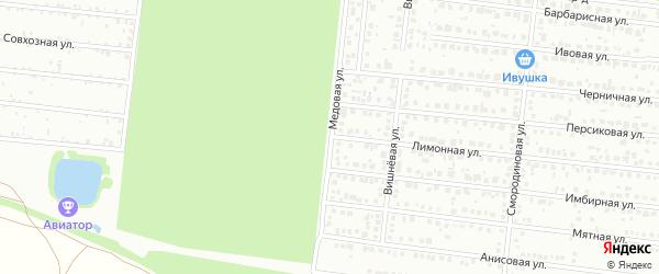 Медовая улица на карте Барнаула с номерами домов