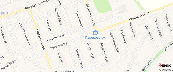 Туманная улица на карте села Власихи с номерами домов