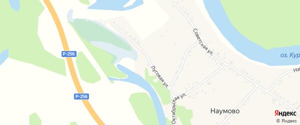 Луговая улица на карте села Наумово с номерами домов
