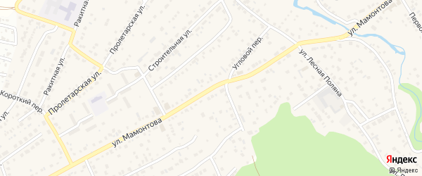 Улица Мамонтова на карте села Власихи с номерами домов