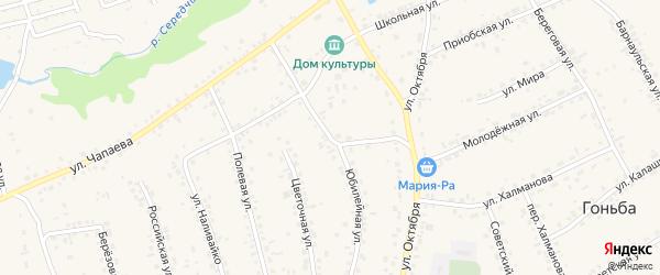 Юбилейная улица на карте села Гоньбы с номерами домов