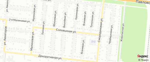 Калиновая улица на карте территории сдт Озерного с номерами домов