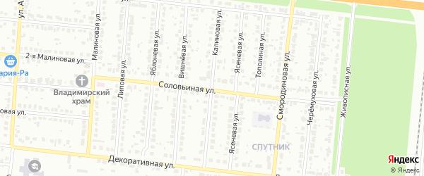 Калиновая улица на карте садового некоммерческого товарищества Сельского строителя с номерами домов