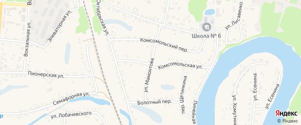 Улица Мамонтова на карте поселка Тальменки с номерами домов