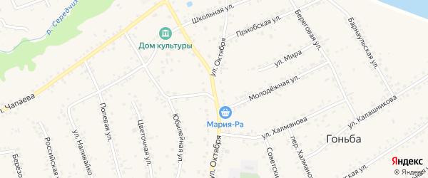 Улица Октября на карте села Гоньбы с номерами домов