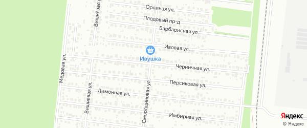 Черничная улица на карте Барнаула с номерами домов