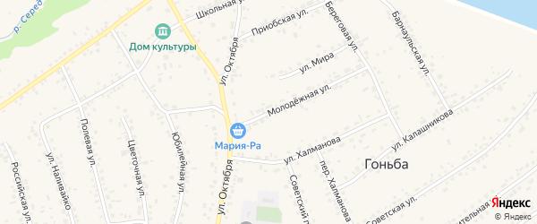 Молодежная улица на карте села Гоньбы с номерами домов
