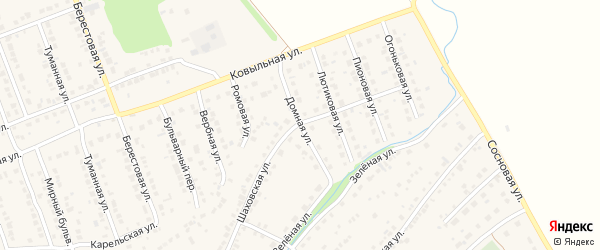Домная улица на карте села Власихи с номерами домов