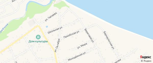 Приобская улица на карте села Гоньбы с номерами домов