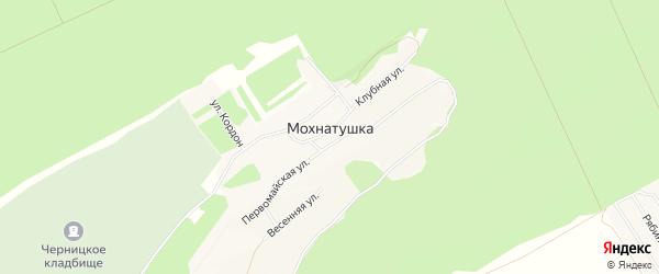 Карта поселка Мохнатушки города Барнаула в Алтайском крае с улицами и номерами домов