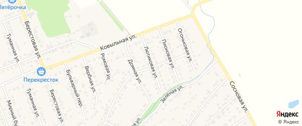 Лютиковая улица на карте села Власихи с номерами домов
