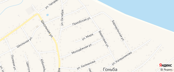 Улица Мира на карте села Гоньбы с номерами домов