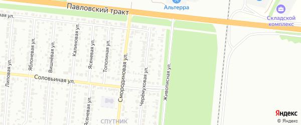 Черемуховая улица на карте садового некоммерческого товарищества N 11 с номерами домов