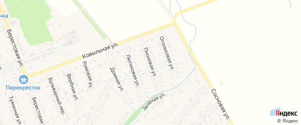 Пионовая улица на карте села Власихи с номерами домов