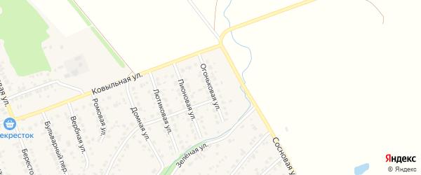 Огоньковая улица на карте села Власихи с номерами домов