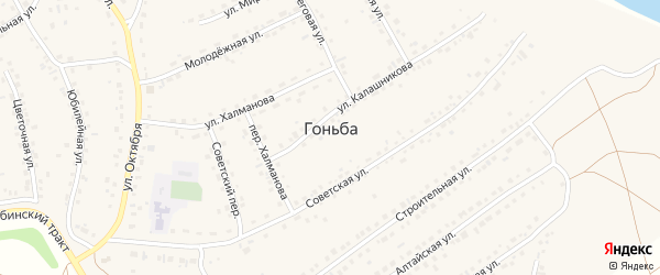 Нагорная улица на карте села Гоньбы с номерами домов