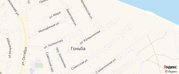 Улица Калашникова на карте села Гоньбы с номерами домов