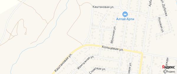 Каштановая улица на карте поселка Казенной Заимки с номерами домов