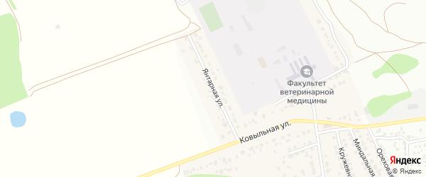 Янтарная улица на карте Пригородного поселка с номерами домов