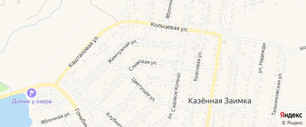 Сливовая улица на карте поселка Казенной Заимки с номерами домов