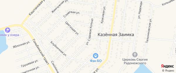 Цветущая улица на карте поселка Казенной Заимки с номерами домов