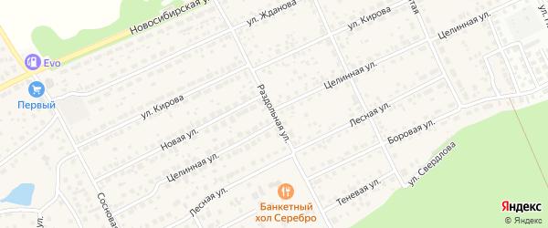 Раздольная улица на карте Пригородного поселка с номерами домов