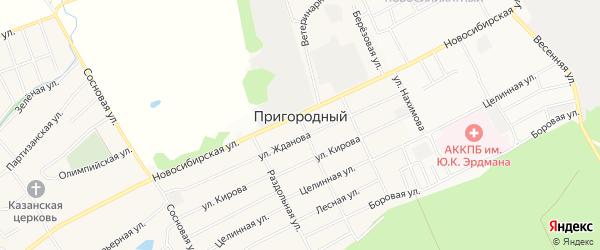 Карта Пригородного поселка города Барнаула в Алтайском крае с улицами и номерами домов