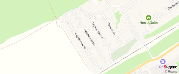 Рябиновая улица на карте поселка Ягодного с номерами домов
