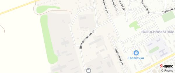 Ветеринарная улица на карте Пригородного поселка с номерами домов