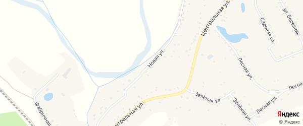 Новая улица на карте Лугового села с номерами домов