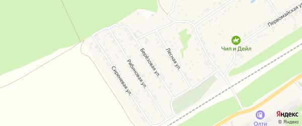 Березовая улица на карте поселка Ягодного с номерами домов