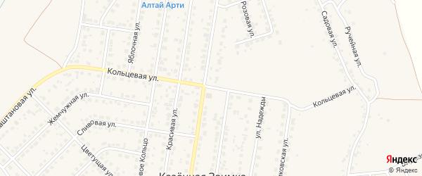 Кольцевая улица на карте поселка Казенной Заимки с номерами домов
