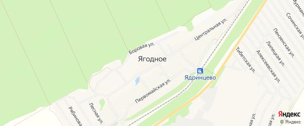 Карта поселка Ягодного города Барнаула в Алтайском крае с улицами и номерами домов