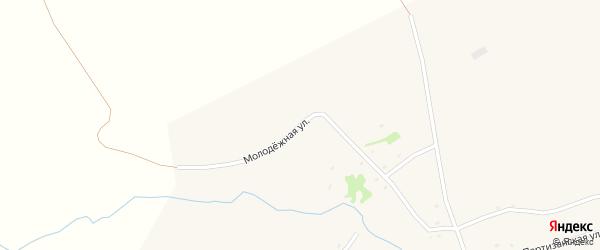 Молодежная улица на карте села Белово с номерами домов