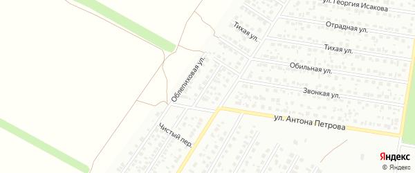 Облепиховый переулок на карте Барнаула с номерами домов