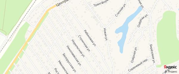 Рябиновая улица на карте села Лебяжьего с номерами домов