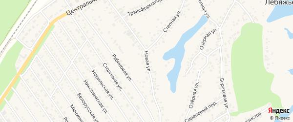 Новая улица на карте села Лебяжьего с номерами домов