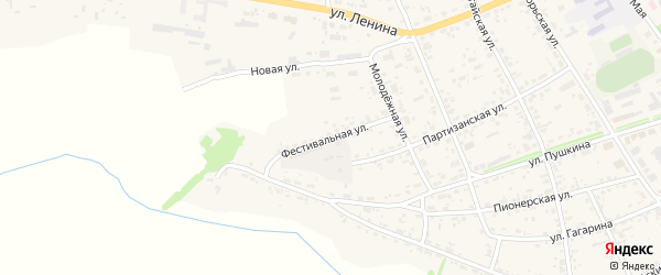 Фестивальная улица на карте села Усть-Чарышской Пристани с номерами домов