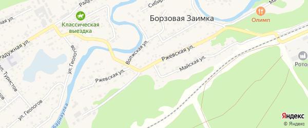 Ржевская улица на карте поселка Борзовой Заимки с номерами домов