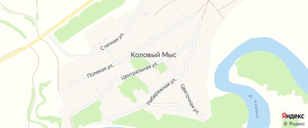 Центральная улица на карте села Колового Мыса с номерами домов